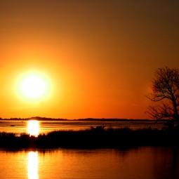 Разумный кинематограф - показ документального фильма «Амазония - реки солнца»