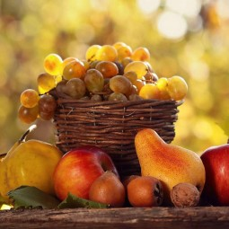 «Дары золотой осени»