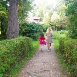 Фенологические прогулки по Мелихову