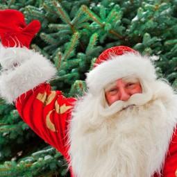Виртуальная встреча «Письмо Деду Морозу»