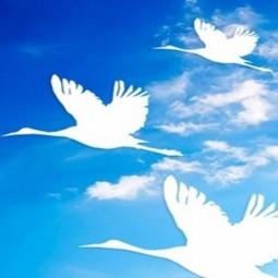 Праздник «День белых журавлей»