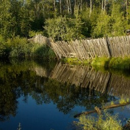 Виртуальная фотовыставка «Камшиловка – Топорково»