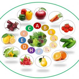 Видеоролик «Еда полезная и вредная»