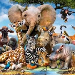«Веселый зоопарк»- детская арт-галерея на асфальте