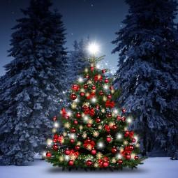 Виртуальный спектакль «Елка искрами сияет, всех на праздник приглашает»