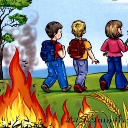 Познавательная программа «Не играй с огнем»