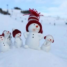 «История снеговиков и снежных баб»
