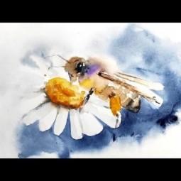 Мастер-класс по рисованию «Пчела»