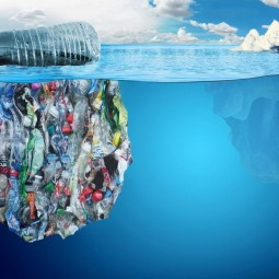 Видеобеседа «Мировой океан и пластик»