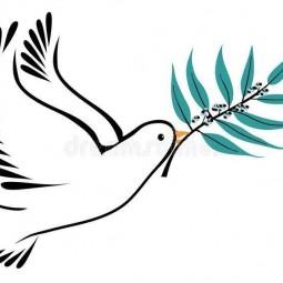 Книжно-иллюстрированная выставка «Дороги мира и согласия»