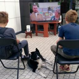 «Летний краеведческий кинозал»