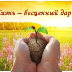 Жизнь–бесценный дар!