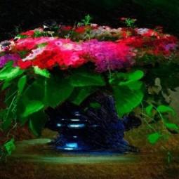 Видео экскурс в искусство и мастер-класс по ИЗО «Букет цветов. Флоксы»