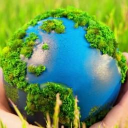 Виртуальная встреча «Живая планета»
