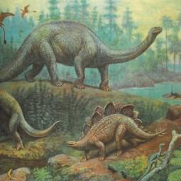 «Удивительная палеонтология»