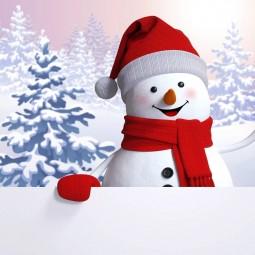 Онлайн рубрика «Снеговик-озорник»