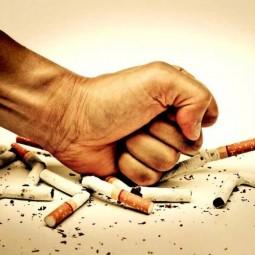 «Вся правда о курении»