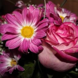 «Праздник цветов»