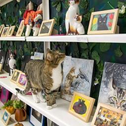 Открытие выставки «Кот – животное древнее и неприкосновенное»