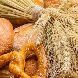 Литературно-познавательный час «Хлеб - всему голова»