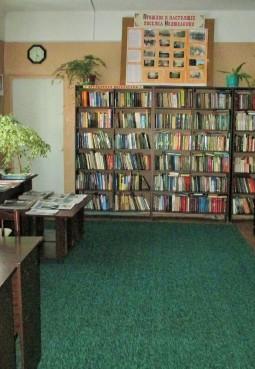 Колюбакинская сельская библиотека