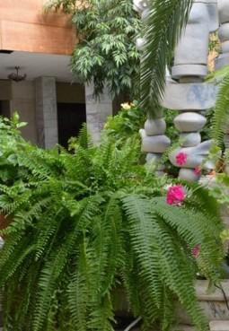 Дом культуры «Белая Дача»