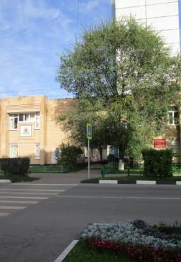 Библиотека «Пилигрим» г. п. Электроугли