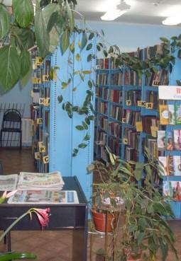 Никиткинская сельская библиотека-филиал