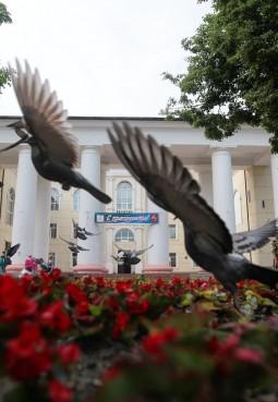 Щёлковский районный культурный комплекс
