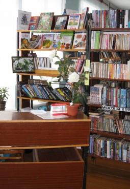 Ватулинская сельская библиотека