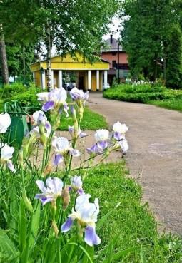 Парк культуры и отдыха г.п. Малаховка