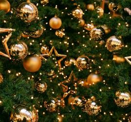 Программа «Новогодний переполох»