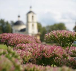 Виртуальная фотовыставка «Весна в Рузском крае