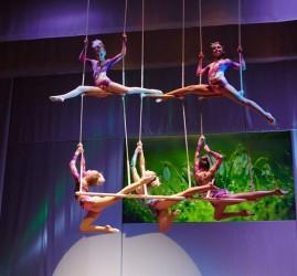 Показ записи циркового номера «Лирические нотки»