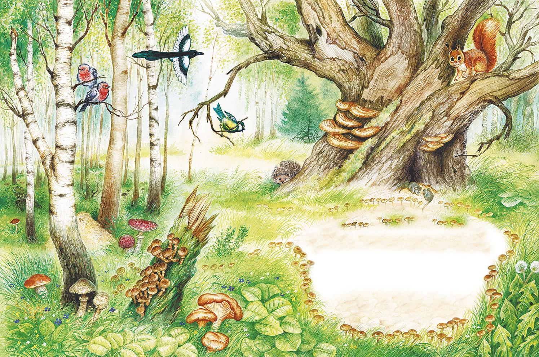 Картинки о лесе для детей нарисованные