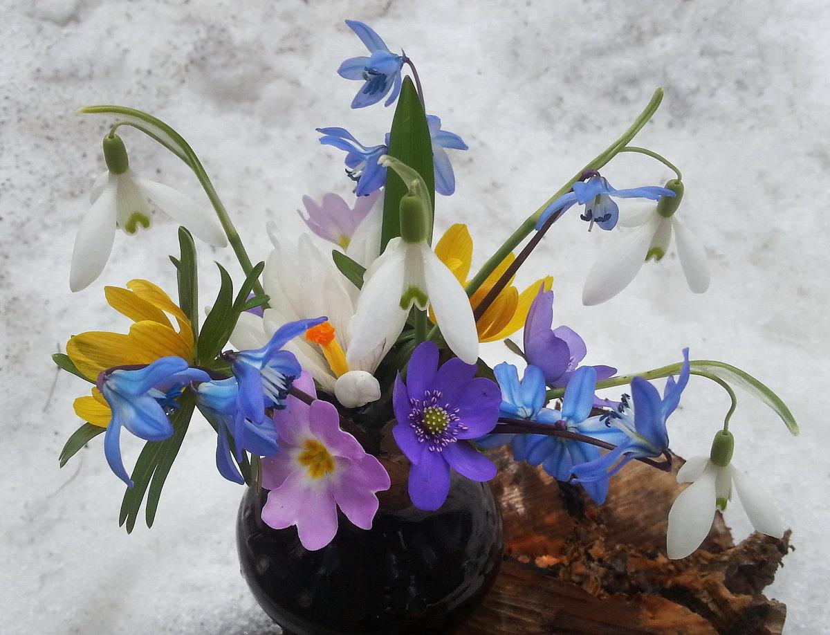 Красивые вазоны своими руками на даче фото консультация